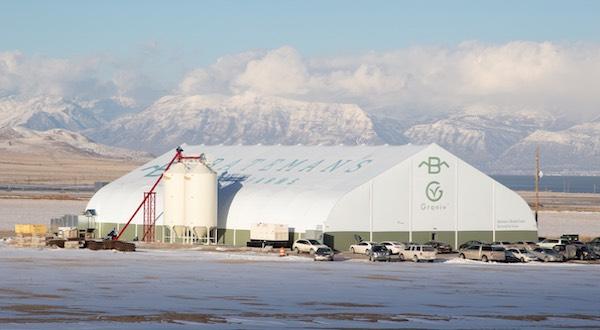 grov feed center
